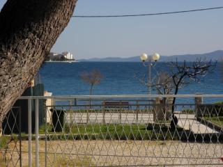 Anthony A4(2+1) - Zadar