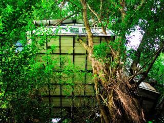 Tropical Paradise Tree House B&B 15' fr Hanoi City
