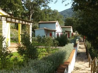 villaggio Mezzo Ortano, Rio nell