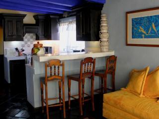 La Casa de Laura Apts/Suites 'El Rey de Chocolate'