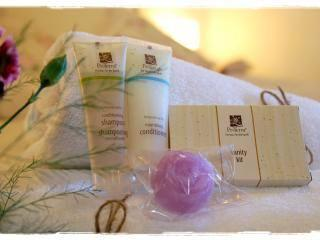 As an eco-friendly establishment, we include the Pro Terra line of eco-friendly bath amenities.