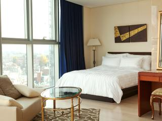 Panoramic view luxury apt near Seoul station