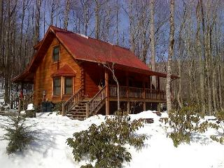LOG CABIN ON CREEK WITH BUBBLING HOT TUB! Available for Merlefest!