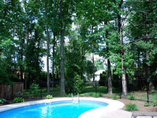 Beautiful view from the Kitchen overlooking the pool and deep private lot