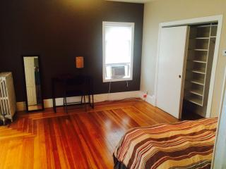 Beautiful Spacious Room (SU1-1), Somerville