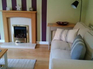 Living room - fire place with gas fire