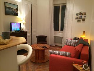 T2 bel ancien de 40 m² sur Lyon Tolstoï, Villeurbanne