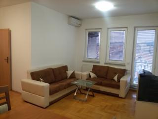 Lovley,comfortable and clean apartment in Prishtin, Pristina