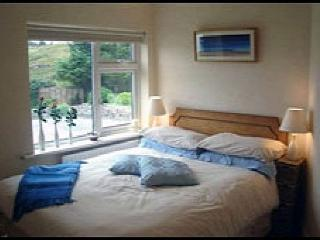 21567 - Fuchsia Apartment Lett, Letterfrack