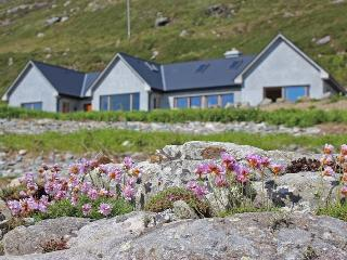 Dolphin Beach Lodge Clifden Connemara