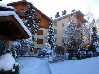 Chamonix Apartments - SavoyD