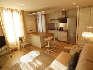 1 bedroom full center 2 steps Palais, Beaches HO41, Cannes
