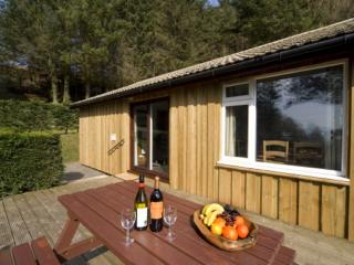 Conifer Lodges - Spacious country Lodges in Oban, Kilmore