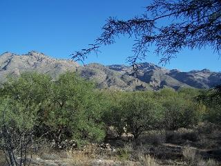View! View! View! Furnished with many private touches and Mountain Views!, Tucson