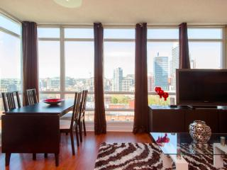 Spacious Luxury Suite Downtown, Toronto