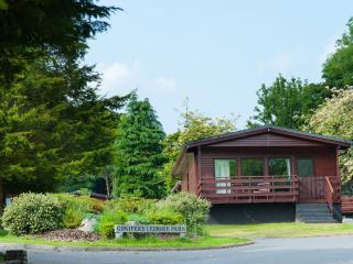Stunning lodge with Hot Tub- 102743, Newton Stewart