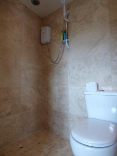 wet room with shower and toilet.