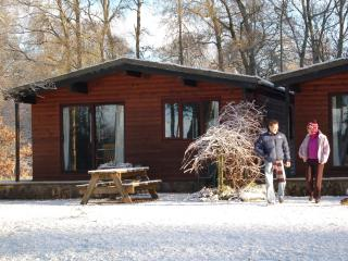 Cute lochside cabin - Cedar cabins, Aberfoyle