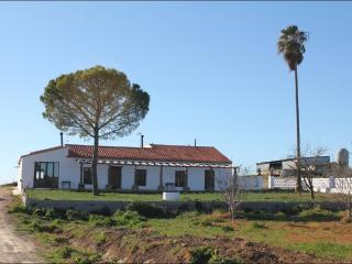 Typical 'Cortijo-cottage' in olivetree plantation., Zafra