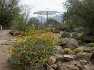 Quiet/Private Winter Sun Retreat, Oro Valley