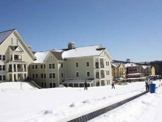 Ski-in/out Luxury 3 Bedroom & 3 Bathroom Okemo Penthouse Condo at Jackson Gore