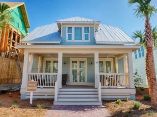 Prominence on 30A - West Chester Beach House