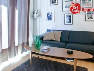 Modern apartment in the heart of Reykjavik - 1519