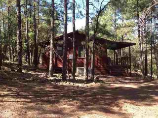 Cozy Cabin In Pinetop!