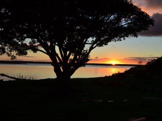It's the sunset golden hour,  pour yourself a glass of Kangaroo Island wine & enjoy Pelican Lagoon.