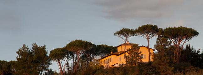 the view of the villa from vineyards