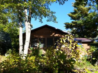 Tranquil Waterfront Cabin On Lake Delta!, Iron River