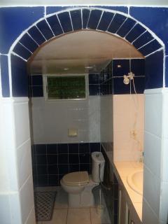 Salle de bain N°1: grande douche, lavabo WC, espace buanderie