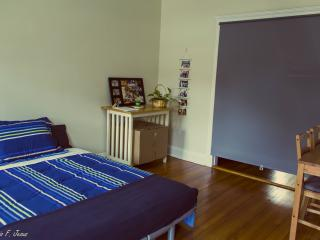Convenient, Cozy and Affordable Room (Shared Apt), Boston