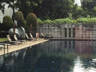Terranova Luxury Apartment, Singapur