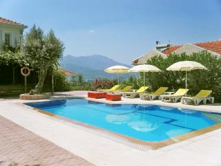 A Countryside villa with private pool, Saklikent