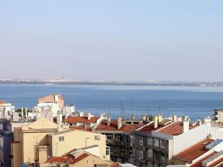 Seagull Tagus Flat zona historica Graça Lisboa
