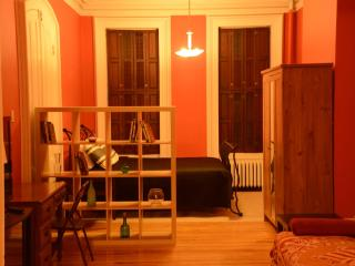 COZY STUDIO APT CLOSE TO JOURNAL SQ PATH AND NYC, Jersey City