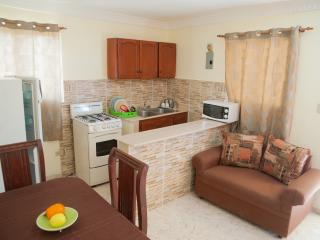Economic 1-Bedroom Apartment (6 Adults) - Terrace