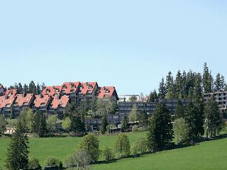 Vacation Apartment in Schonach im Schwarzwald (# 6140) ~ RA62920