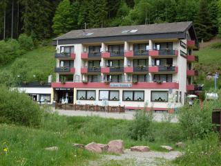 Guest Room in Enzkloesterle  (# 8601) ~ RA64751, Seewald