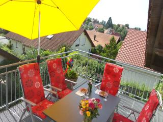 Vacation Apartment in Heiligenberg - 969 sqft, 2 bedrooms, 4 adults and a toddler (# 8990)