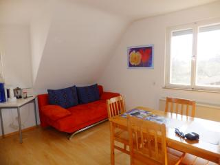 Vacation Apartment in Wildberg - 700 sqft, max. 4 people (# 9035)