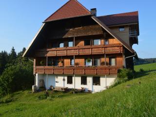 Guest Room in Schonach im Schwarzwald -  (# 9038)
