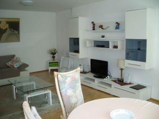 Vacation Apartment in Bad Waldsee - 1 bedroom, 1 living / bedroom, max. 3 persons (# 9247)