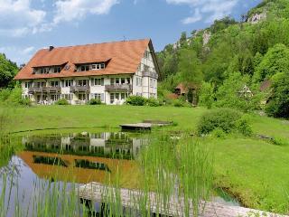 Vacation Apartment in Muensingen - 753 sqft, 1 living room / bedroom max. 5 people (# 9257)