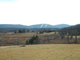 Snow  Day Specials. Sleeps 8, pets OK, 4th nt free, Canaan Valley