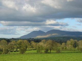 View of galtee mountains from the cottage garden