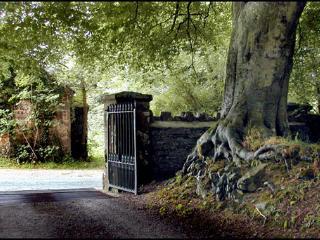 The entrance gate