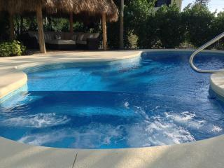 Dolphin Oasis 4bdr/4bth  Pool/hot tub 115' dockage