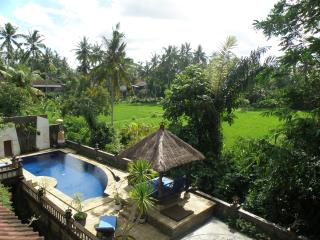 4 BR, pool, rice fields & palm trees, near Ubud